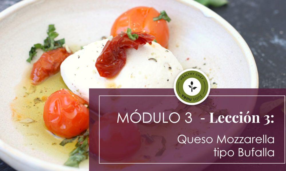 Módulo 3 - Queso mozzarella tipo Bufalla
