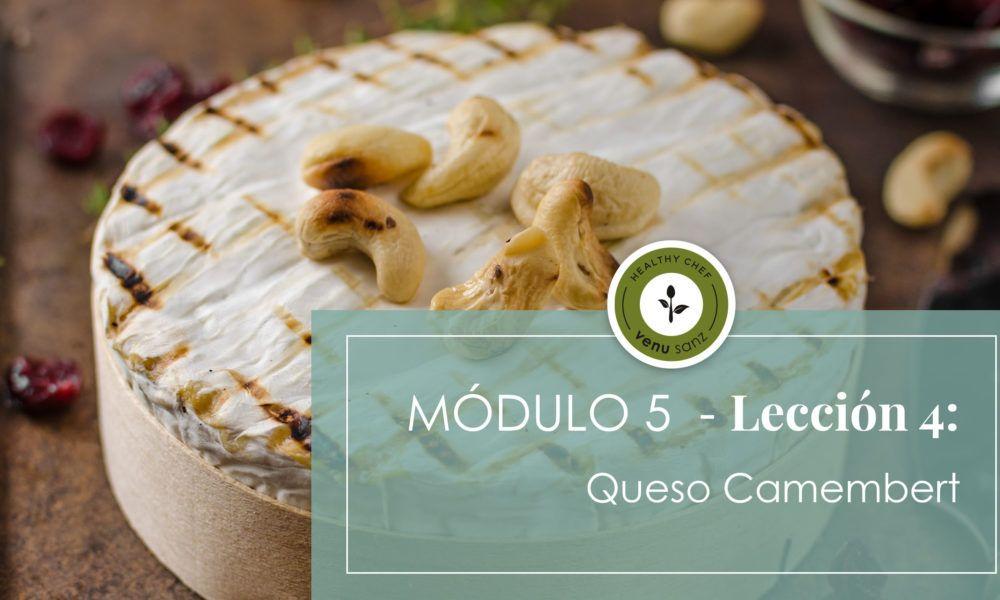 Módulo 5 - Queso Camembert